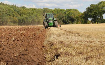 Gary Hurlstone interviewed for Radio4 Farming Today.